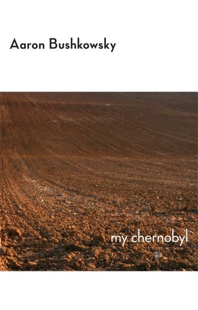 My Chernobyl (print)