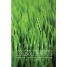 Grassroots (print)